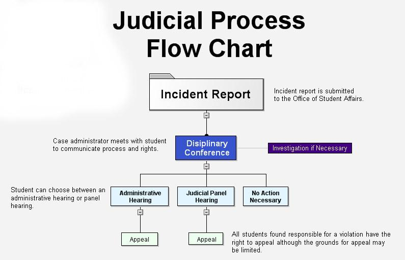 Flow Chart depicting the Judicial and Honor Processes